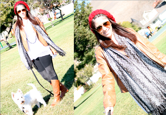 Courtney Dennis - Missoni Scarf, H&M Leggings - Missoni and Chewy