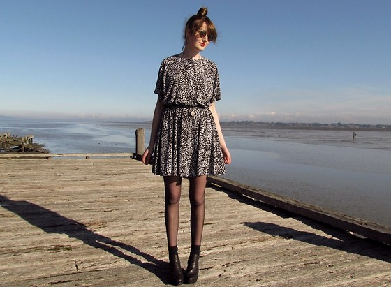 Amy Dunn - Topshop Sunglasses, Vintage Animal Print Dress, Asos Ankle Boots - Sandfly Point