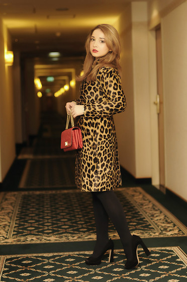 Ioa G - Valentino Leopard Print Coat, Valentino Leather Lace Handbag, Miu Black Pumps - Valentino Kitty