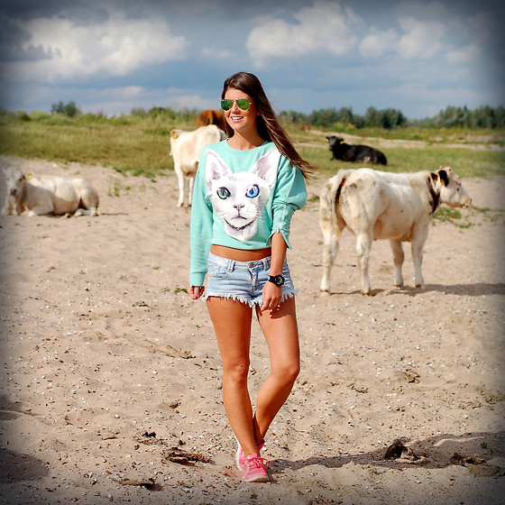 Fashionista Chloë Sterk - H&M The Cat Jumper, Zara Short, Nike Sneakers - The Cat JUMPER