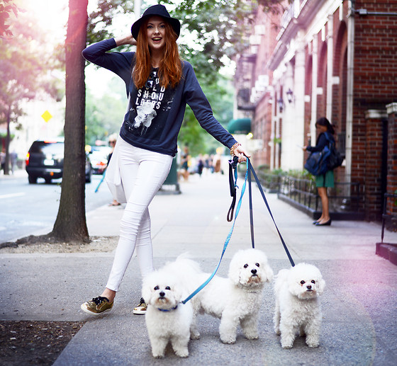 Ebba Zingmark - Love Top, Wildfox Couture Jeans, Le Bunny Bleu Golden Sneekers, 2hand Hat, Lookbook Bag, Borrowed:) Dogs - A walk in Central Park