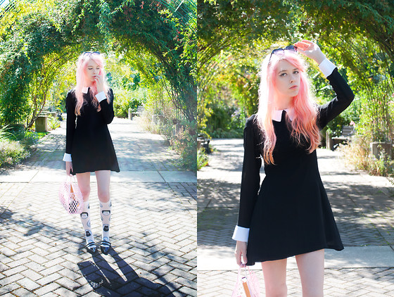 Kailey Flyte - Pop Boutique Witchy Dress, Sock It To Me Cameow Socks, Sun Jellies Jelly Purse, Hair Dessert Heart Clip, Forever 21 Black Flats, Forever 21 Heart Sunglasses - Witchy