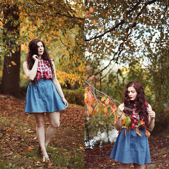 Noelle Downing - Viva Aviva, Pepaloves Denim Skirt - Central Park in the fall