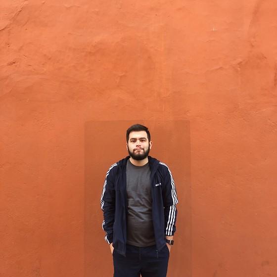 equilibrio clérigo Facultad  Luis Miguel - Adidas, American Apparel Queretaro - Effortless | LOOKBOOK