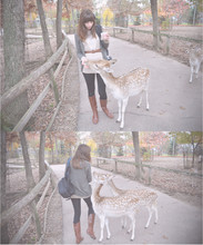 Ashley Moe - Urban Outfitters Lace Sweater, Target Boots - Dear darling deer
