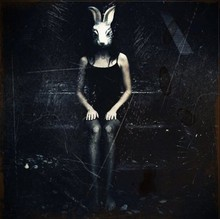 Jazz Patiño vidal - Shirt Black, Stockings, Rabbit Mask - Rabbit on a gray day