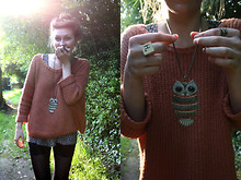 Hannah Marshall - Accessorize Owl Necklace, New Look Knitted Boxy Jumper, Via Ebay Lace Cycling Shorts, H&M Daisy Dress - Hey, owl