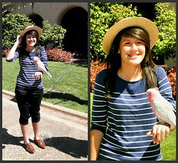 Renee Schmee - Rosie The Pretty Parrot, Gondola Hat, Forever 21 Striped 3/4 Sleeve Shirt, Forever 21 Shiny Black Pants, Steve Madden Oxfords - Rosie The Parrot