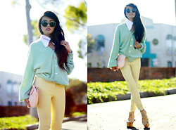 Olivia Lopez - American Apparel Riding Pants, Asos Collar, Karmaloop Sunglasses, Shopthecaravan Clutch - Pastels for Fall