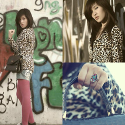 Elisabeth Jessica - Vintage Bags, Leopard Blazers, Ed Hardy Graphic Hot Pants, Traditional Craftmen Rainbow Rings - Vandalisme of Leopard