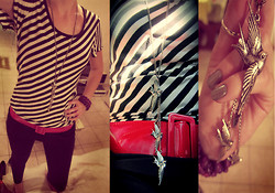 Ché .in.Wonderland - Nsync Striped Top, No Brand Red Belt, Sass Diva Sparrow Necklace - Walk amoung the birds..