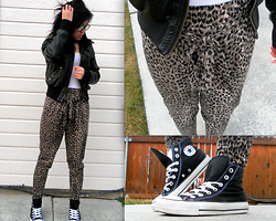 Amy C - Wet Seal Faux Black Leather Jacket, Aeropostale Simple White Tank, Forever 21 Leopard Print, Converse Black High Top, Modern Adam Prescription Black Framed Glasses - Leopard.