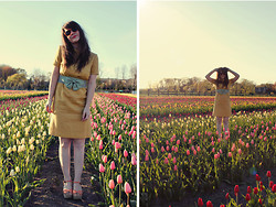 Selective Potential - Vintage, Le Mode Accessories Bow Belt, Bc Footwear Wedges, Modcloth Sunglasses - The tulip rows