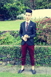 Style Detective Men's Lookbook - Gucci Red Chino, Christian Dior Black Blazer, Burberry Red Chequered Tie, Christian Dior White Shirt - Monarchy Of Roses