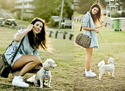 Elle-May Leckenby - Nowistyle Beige/ Brown Book Bag, Sportsgirl Faded Blue Button Up Dress, Sportsgirl White Sneakers - This is my dog, Bear. He enjoys long walks by the sea :)