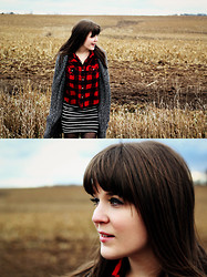 Selective Potential - Tulle Long Cardigan With Waist Tie, Target Red Flannel, Forever 21 Striped Skirt - Middle of the fields
