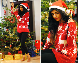 Kavita D - Ebay Christmas / Reindeer Sweater - MERRY CHRISTMAS LOOKBOOK!  ❤