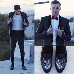Alexander Noyes - Topman Gray Tweed Suit, Brooks Brothers Red Bowtie, Givenchy White Button Dress Shirt, Yru Tiger Shoes - EYE OF THE TIGER