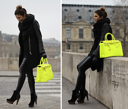 Trendy Taste -  - French Fluo