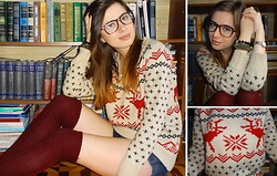 Nika Y - Sweater, H&M Socks - Deer Print Sweater
