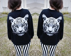 Julie B. - Jacket, Stripes Leggings - Welcome to the jungle.