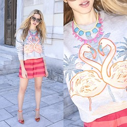Filio Metsi - H&M Sweater - Pink flamingos who lunch