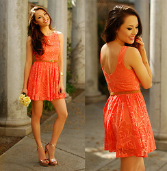 Jessica R. - Rosy Ruby Lace Coral Dress, Dailylook Rose Gold Heels, Lovestylize Butterfly Rose Gold Necklace - Coral Lace