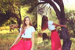 Heather Bybee - Banggood Melon Red Skirt, Forever 21 Striped Teeshirt, Handmade Wooden Necklace - Wild mustangs