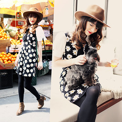 Rachel-Marie Iwanyszyn - Hat, Forever 21 Daisy Dress, Blouse, Dolce Vita Boots, Johnny, Http://Www.Jaglever.Com - WEEKEND BRUNCHING.