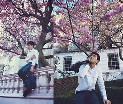 Dany Nguyễn - Zara Multi Purpose Fashion Briefcase, London Boy Leather Watch - 벚꽃 엔딩 (Cherry Blossom Ending)