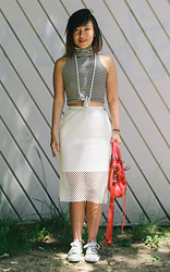 Kimmie N. - Shop Anthom Mesh Pencil Skirt - On the Menu: Zebra Cakes