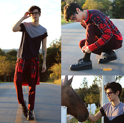 Vini Uehara - Amp A Mulher Do Padre T Shirt, Doc Dog Sweater - Only The Horses