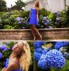 Elin Hansson - H&M Blue Dress, Leo Heels - ♡ FLOWERMATCH ♡