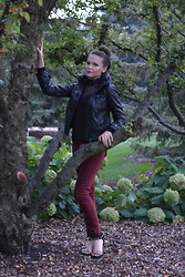 Tatyana Ivona - Forever 21 Faux Leather Jacket, American Rag Red Legging Pants, Agaci Lace Shirt, H&M Gold Studed Heels - Storybook Forest