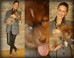 Amina Allam - Romwe Chiffon Blouse, Pull & Bear Long Blazer, Camaieu Faux Leather Pants, Christian Louboutin Loafers, Camaieu Necklace - Life is better with a dog :)
