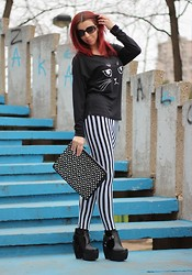 Milica Venoma - Chicnova Bag, Dinodirect Boots, Nowistyle Cat Shirt, Leggings, Romwe Sunglasses - Curiosity killed the cat