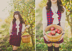 Michelle Elizabeth R - Urban Outfitters Plaid Dress - Apple Picking