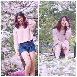 Yepoon Ach - H&M Light Pink Knit, H&M Demin Short, Converse Cream, Swatch Pink Wood - Sakura Spring