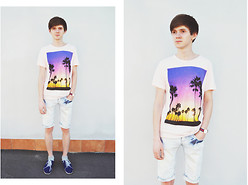 Denis Fleim - Pull & Bear T Shirt - PALMS