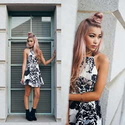 Francis Lola - Tiger Mist Black Blossom Skater Dress, Report Allon Bootie - Blvck Blossom.