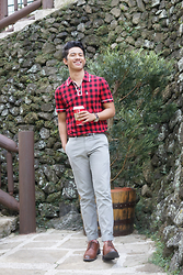 David Guison - Penguin Gingham Polo Shirt - Gingham for the Holidays