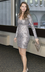 Alexandra Joy - Bcbg Silver Sequin Dress - New Year's Glam