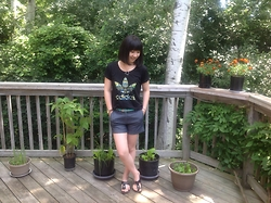 Jenny Hou - Adidas T Shirt, Zara Denim Shorts, Ardene Sandals - Comfy Work