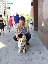 Tim Tsai - Irreplaceable Rémy The Corgi, Warby Parker Winston, Unknown Grey Tank, A.P.C. Black Jeans, Nike Free 5.0 - I was on my way to work