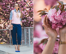 Olga Choi - Wool Overs Cashmere Vest, Kate Spade Silk Scarf, Sam Edelman Heels - Oh my culottes
