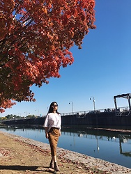 WMwatchme - American Apparel White T Shirt, Aritzia Skirt, Zara Ankle Boots - Fall in love