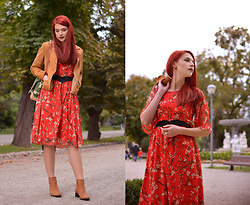 Anaivilo B - Lightinthebox Chiffon Dress - Romantic autumn
