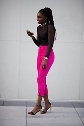 Sharnelle Clue - H&M Fuchsia Pant, H&M Fishnet Top - Pop Of Color
