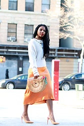 Monroe Steele - Dezzal Top, Tibi Skirt, Bag, Earrings - Ready for Spring