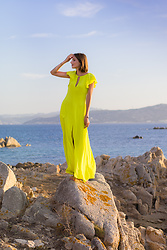 Elle de Strasbourg - Bcbg Maxi Dress - PERFECT BEACH DRESS